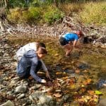 Environmental sustainability students and chemistry students on field trip to study the North Fork in Bergton, Va. Photo by Kevin Carini.