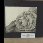 """Rose"" by Anneke McDonald '22 at OASIS Gallery, Feb. 2021"