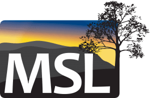 MSL Consulting